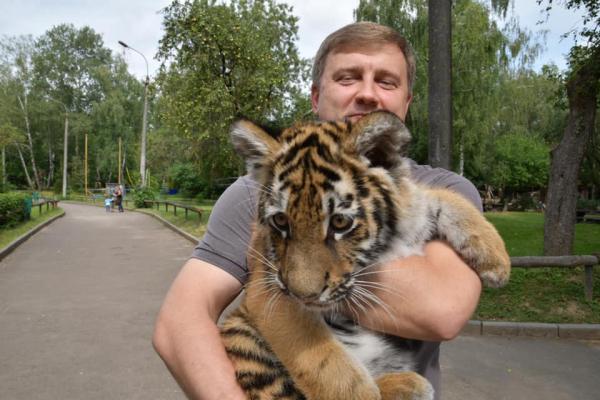 У Рівненський зоопарк передали маленьку тигрицю (ФОТО)