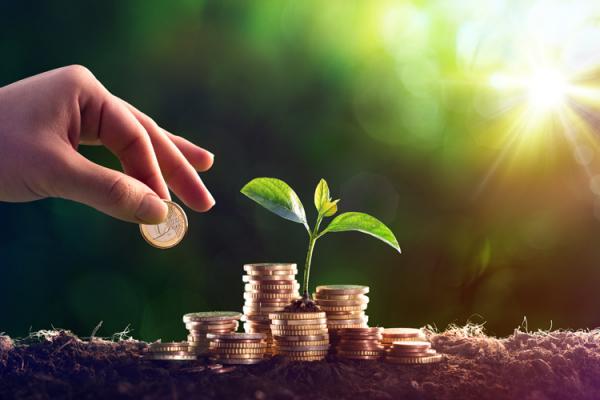 Рівненські платники екологічного податку поповнили бюджет 29 мільйонів гривень