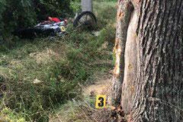 На Дубровиччині загинув мотоцикліст
