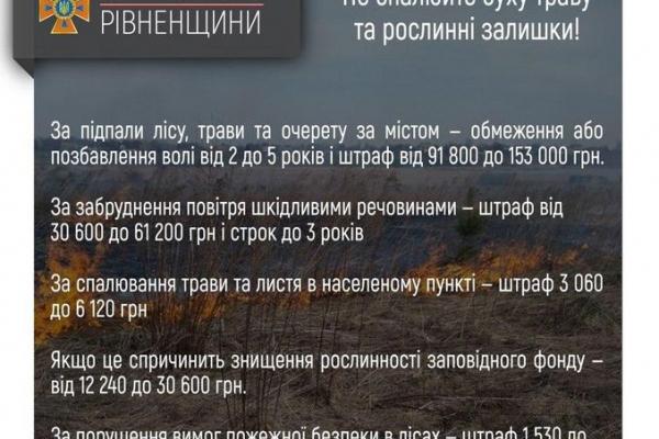 Рятувальники закликають жителів Рівненщини не спалювати сухі рослинні залишки