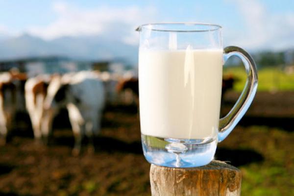 Фермерам Рівненщини компенсують вартість доїльних апаратів