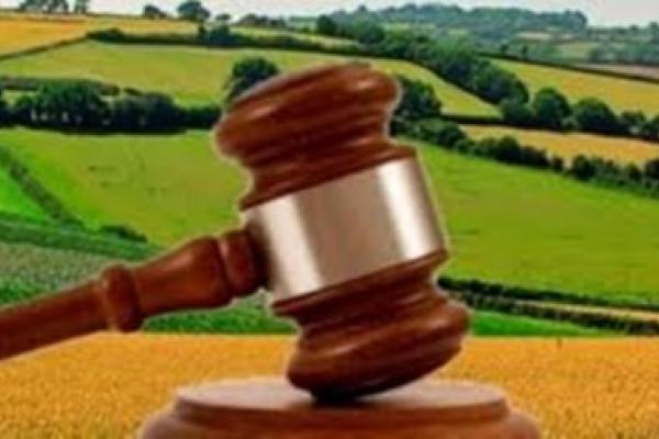 За втручання прокуратури державі повернуто  самовільно зайняту земельну ділянкувартістю понад 2 млнгрн