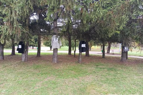 В одному з парків Рівного на деревах розвісили одяг