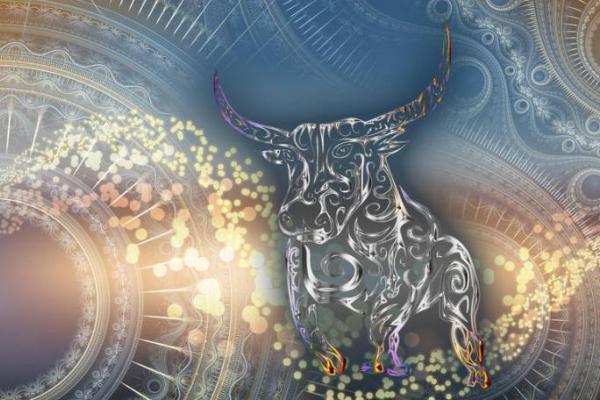 В чому рівнянам зустрічати рік бика?