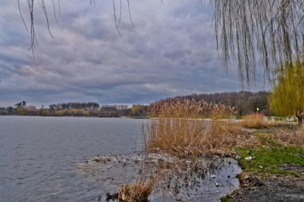 В озері у Рівному знайшли тіло жінки