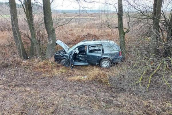 На Рівненщині автомобіль знесло з дороги і затисло між дерев
