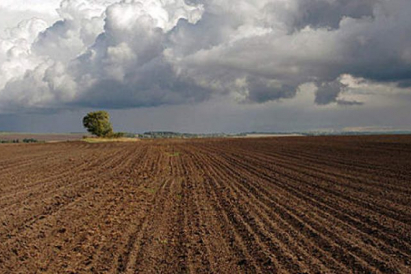 В комунальну власність територіальної громади Дубенського району повернуто понад 8 га землі