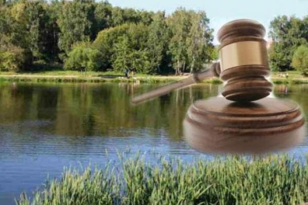 Державі повернуто ставок та земельні ділянки в Сарненському районі