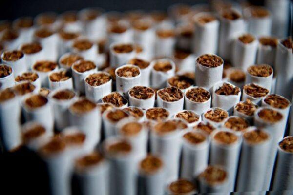 У Корці вилучили та знищать понад 7,5 тисяч пачок контрафактних цигарок