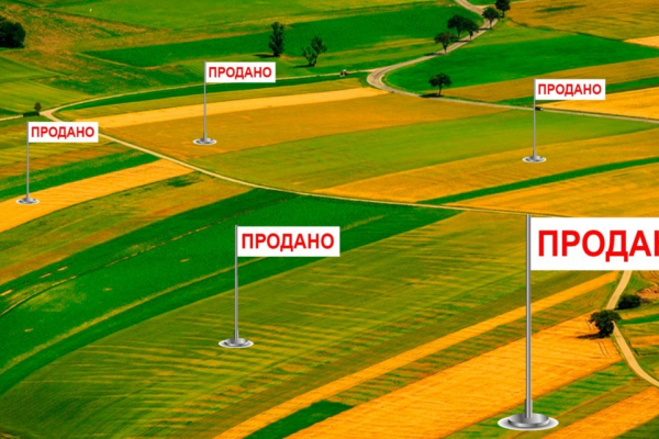 Понад 200 тисяч власників паїв Рівненщини зможуть продати свою землю