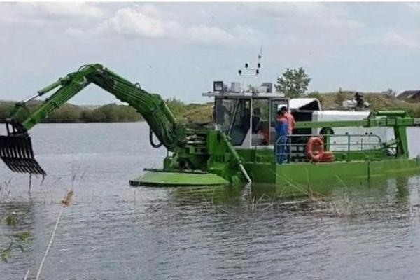 Рівняни чекають очищення Басівкутської водойми