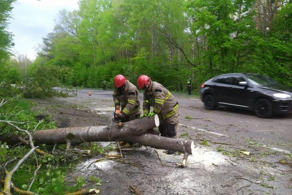 Сарненські рятувальники оперативно розблокували дорогу Київ-Ковель-Ягодин (ФОТО)