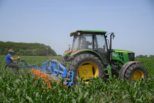 Рівненські виробники «без пестицидів» пропагують здоровий спосіб харчування