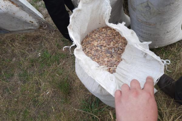 У Вараському районі вилучили майже 140 кг «сонячного каміння»