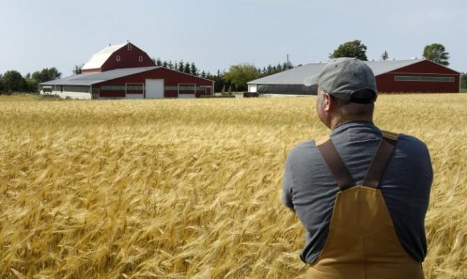 Молоді острозькі фермери можуть отримати 40 тисяч гривень