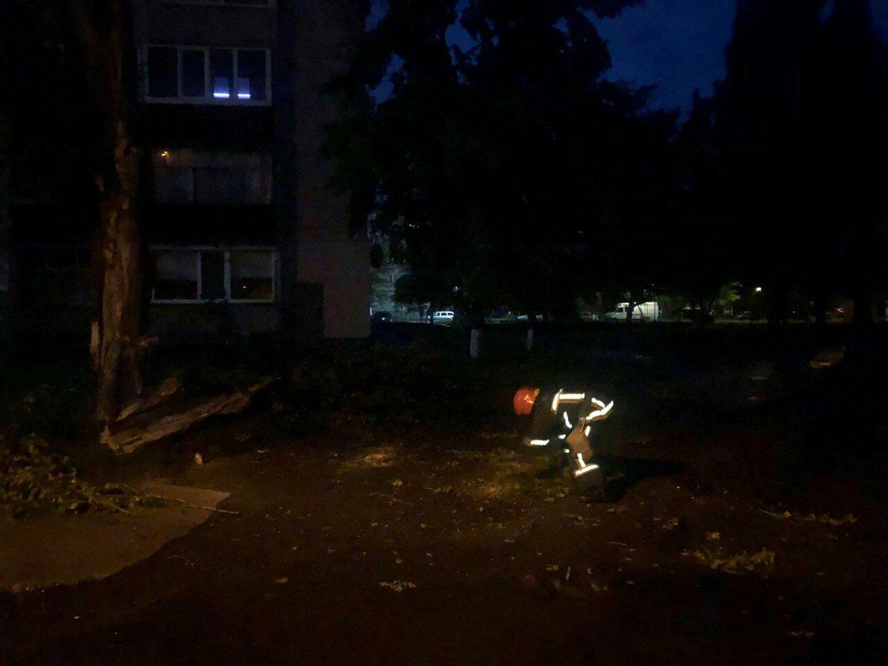 У Вараші рятувальники звільнили дорогу від поваленого дерева