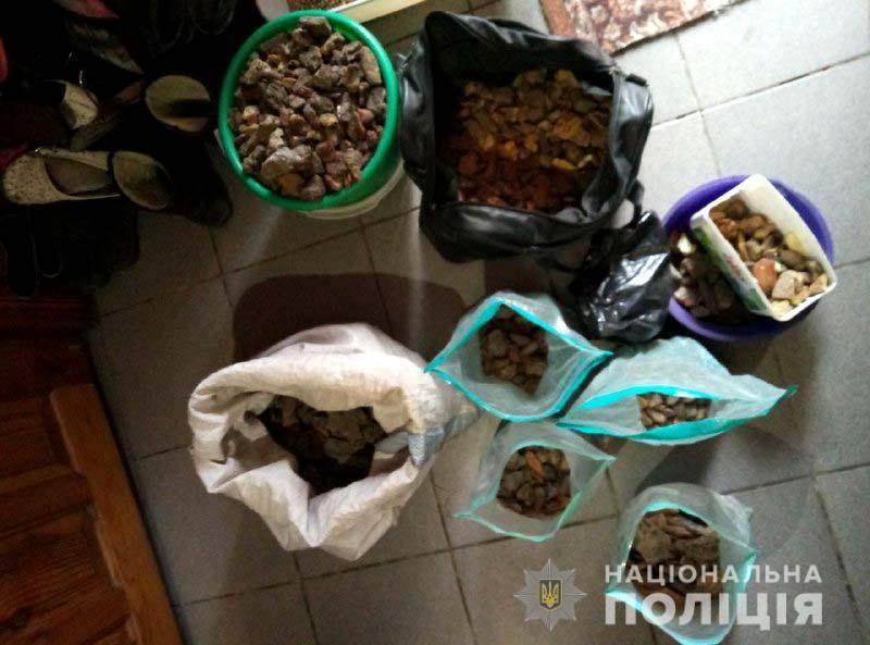 Поліцейські Рівненщини вилучили понад 25 кілограмів бурштину