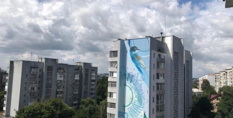Нові digital-мурали намалюють на Рівненщині