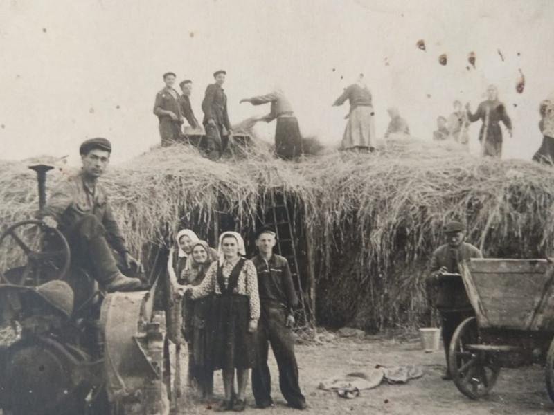 Як жнивували на Кореччині у післявоєнний час