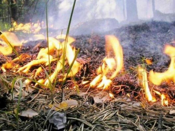 На Острожчині пожежна небезпека