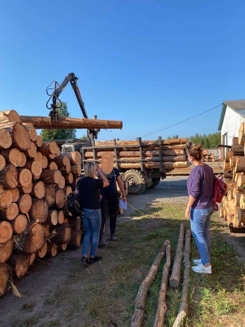 Більше двох десятків неоформлених працівників у лісгоспах Рокинівщини виявили інспектори Управлінн Держпраці області
